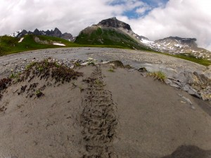 Hike & Bike und Gletscherritt