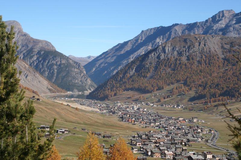 1056-alpina3web